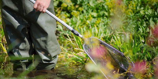 Gartenteam-Kurz Gartenpflege Teichbau Teichpflege
